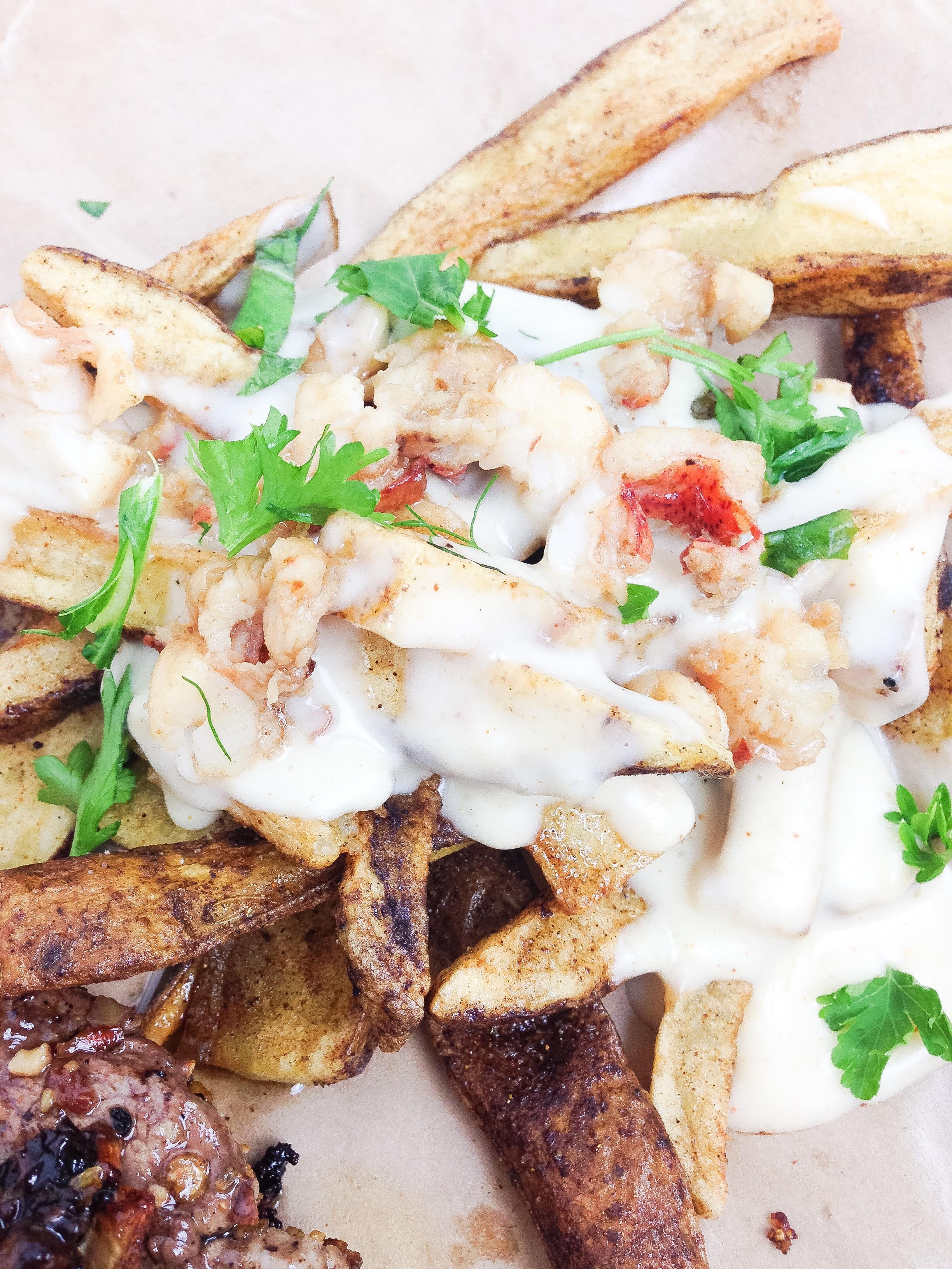 surf and turf fries